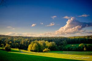 Landschaftsbild im Herbst © Enzo Lopardo