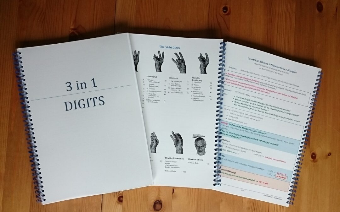 """Praxishandbuch """"Digits"""""""